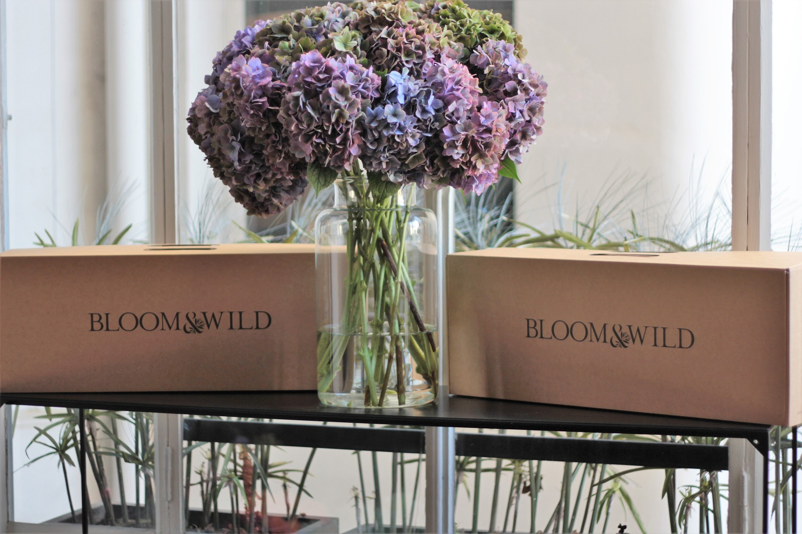 bloom et wild stephanie CAUMONT 6